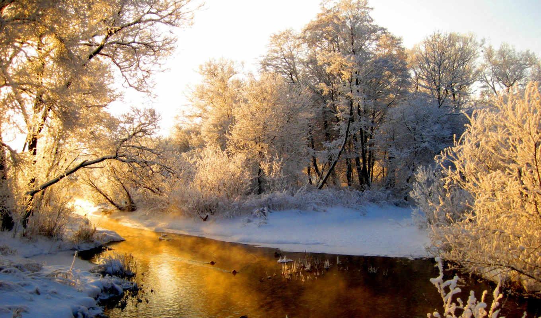 деревья, снег, зима, речка, солнце, утро, лес, инее,