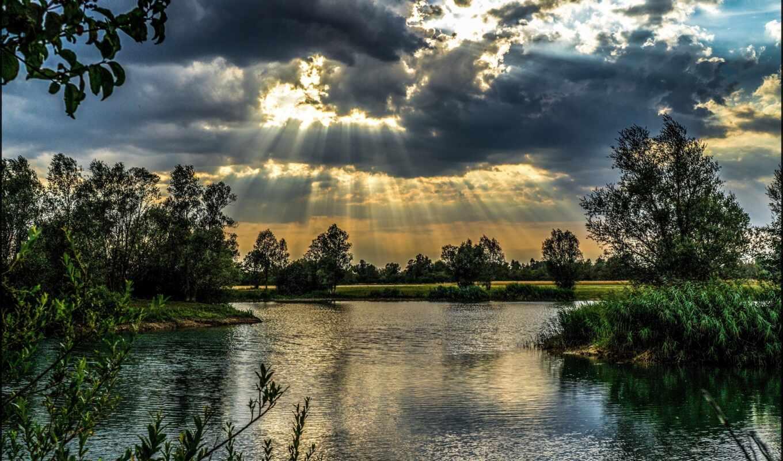marsh, freshwater, wikipediafreshwater, naturework, new, hampshire, pb