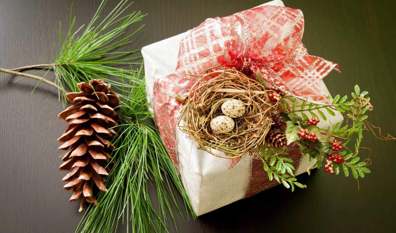 desktop, best, holiday, красивые, free, download, nest, swallow, pic, christmas, праздники,