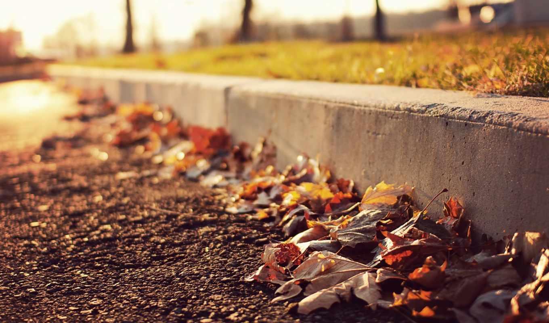 солнечный, день, случайные, главная, скачивают, категории, сегодня, дорога, top, листья, новинки,