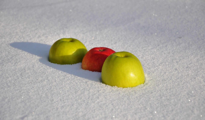 бен, линда, ее, apple, муром, снег, michael, яблоки