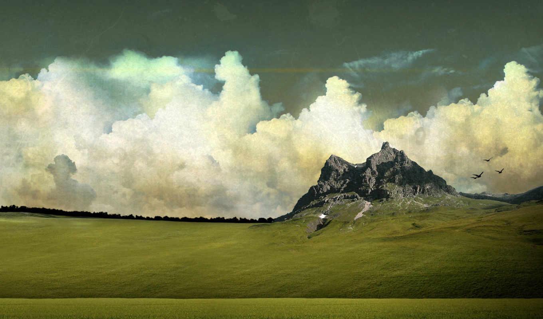 amazing, природа, landscape, pack, desktop, трава, ножницы, февр,