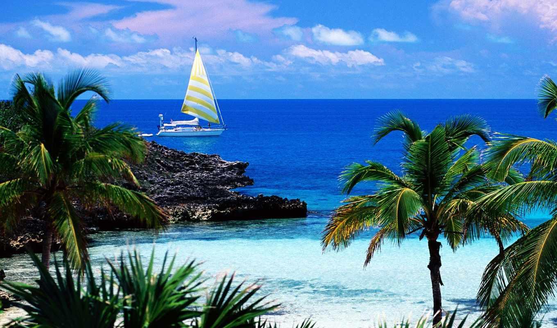море, ocean, природа, крым, яхта, судно, пальмы, маленькое,