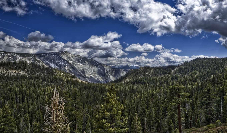 mountains, гора, дерево, снег, tropical, комментарий, остров, priroda,
