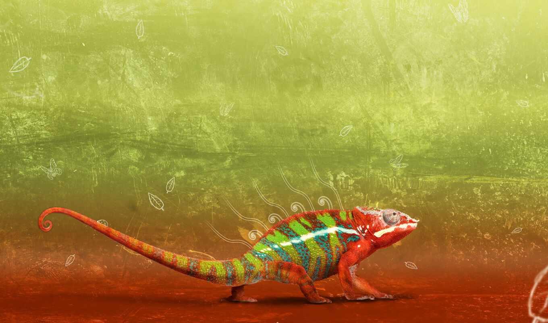 animal, композиция, art, chameleon, parede, alive, papel, категория, akvyi, web