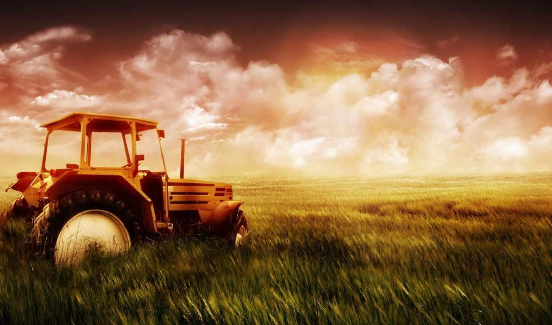 поле, трактор, обои, природа, небо, деревня, трава