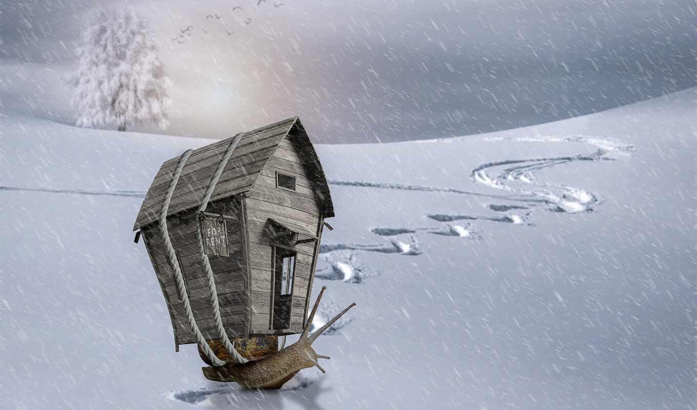 снег, laax, улитка