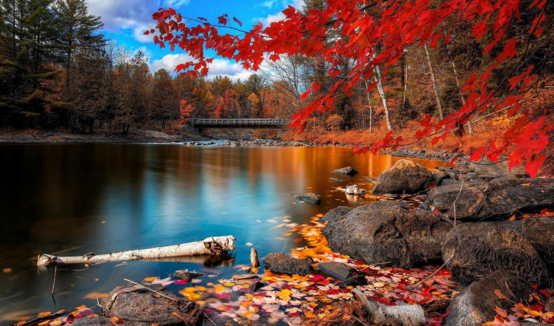горы, природа, леса, реки, пейзаж, excelent, landscapes, широкоформатные, озера,