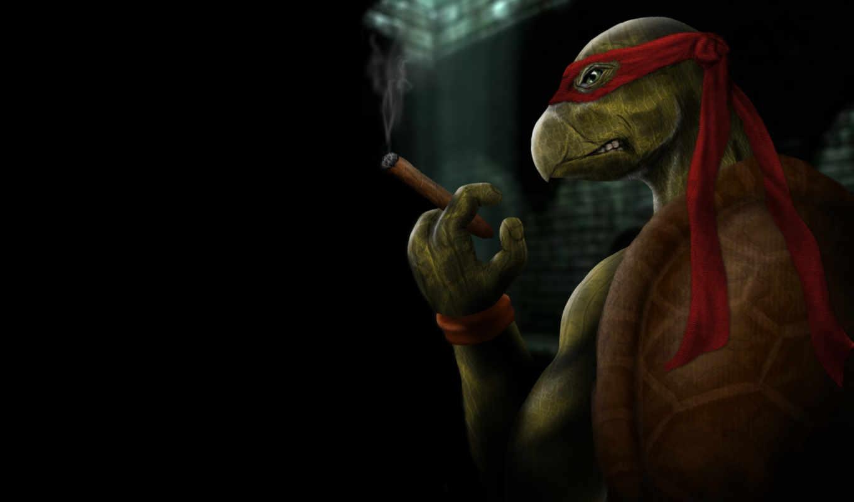 art, tmnt, turtles, ninja, mutant, teenage, черепашки, только, ниндзя,,