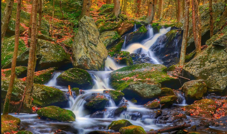 desktop, природа, лес, водопад, камни, янв, категории, телефон, река,