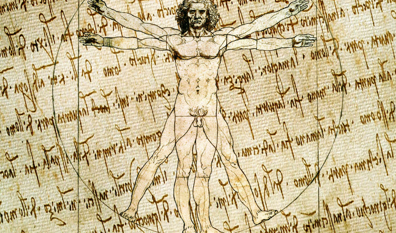мужчина, леонардо, витрувианский, да, винчи, рисунок, вектор, стиль, canvas, artist, рукопись,
