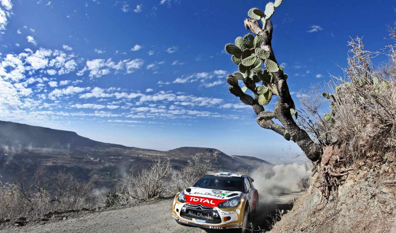 rally, citroen, спорт, wrc, race, картинка, скорость, небо,