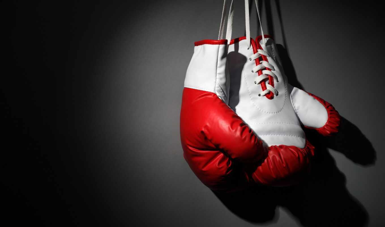 boxing, спорт, news, перчатка, казахстан, sporty, confederation, чемпионат