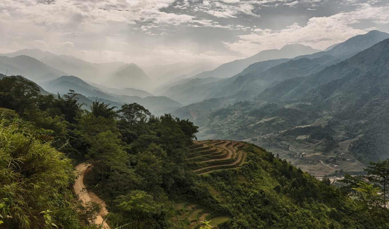 лес, гора, vietnam, туман, долина, fore