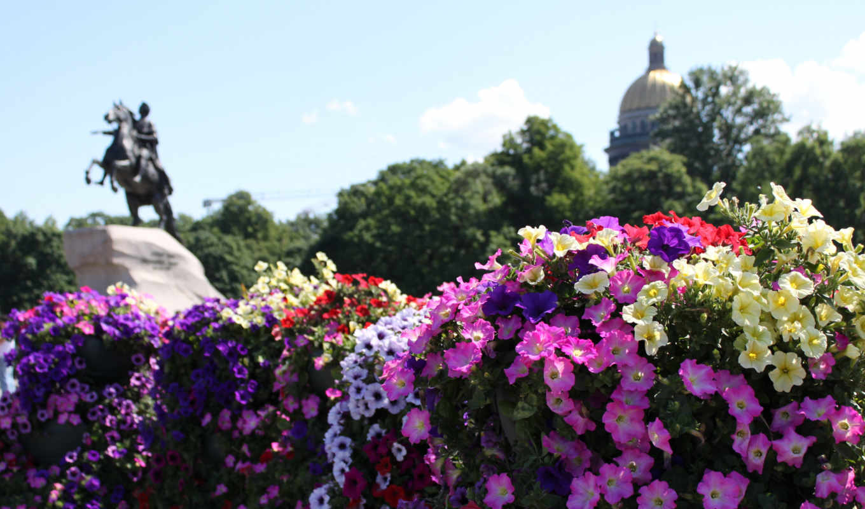 памятник, knowledge, celebrities, цветы, санкт, цена,