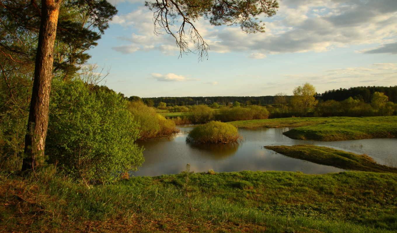 природа, сосна, пейзажи, отдых, река, небо, прогулка, пруд, широкоформатные,