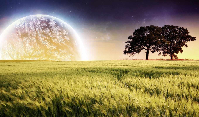 поле, свет, природа, атмосфера, fantasy, утро, fantastic, солнечный