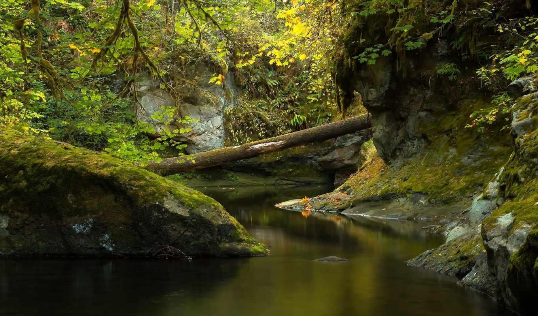 природа, категории, телефон, деревья, река, desktop, скалы,