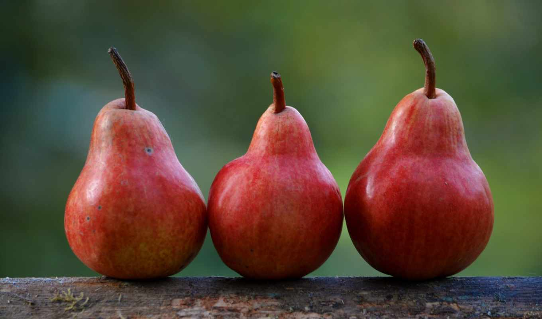 red, плод, сладкое, фрукты, poire, poires,