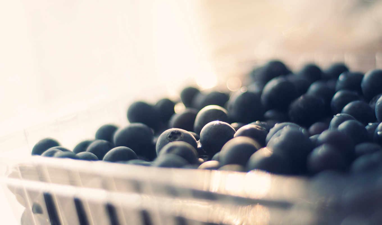 черника, ягоды, макро, разделе,