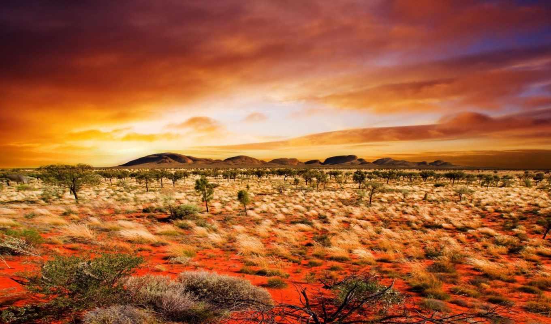 пустыня, природа,