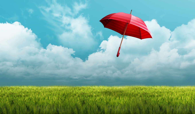 зонтик, поле, red, oblaka, небо, трава, сумки, кошельки, зонты,