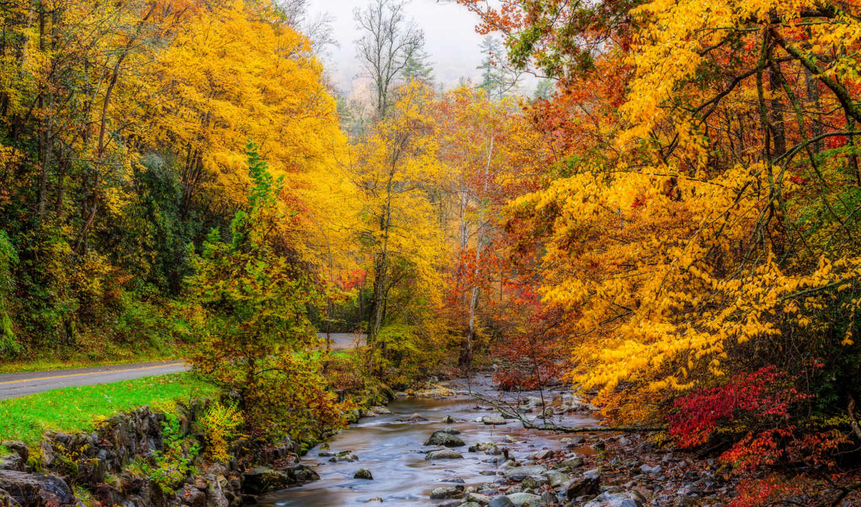 mill, осень, сша, usa, grist, заводь, tennessee, природа, дымчатый,