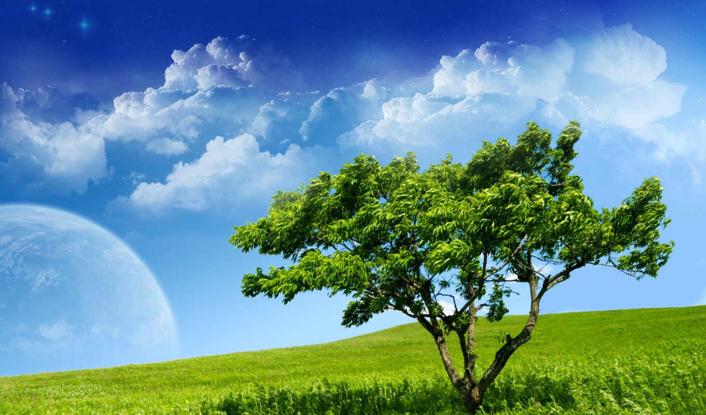 serenity, baum, desktop, earth, space, high, resolution, olduk, природа, öldü, definition, landscape, frei, hintergrundbilder, best, fotos, free,