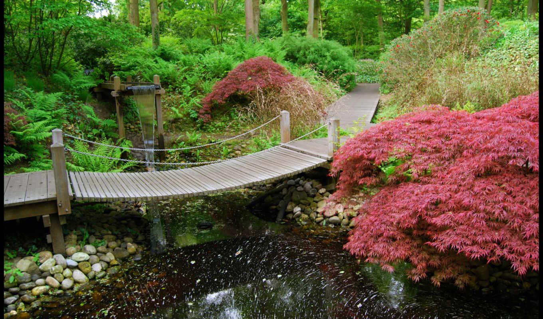 japanese, сады, garden, priroda, пруд, водопад, you,