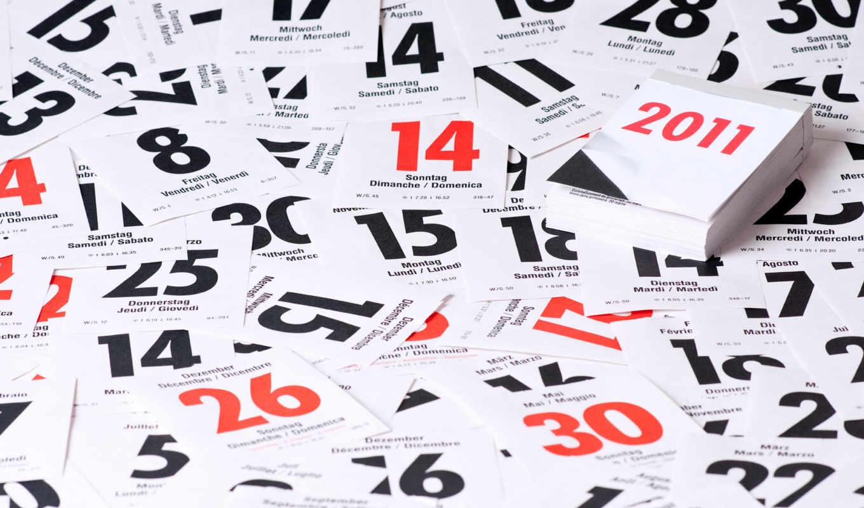 год, обои, новый, календарь, коты, календурь, фото