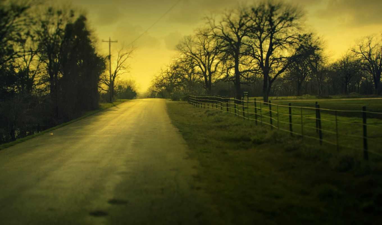 дорога, landscape, деревья, дерево, листья, природа, картинка, туманным, листва, утром, забор,