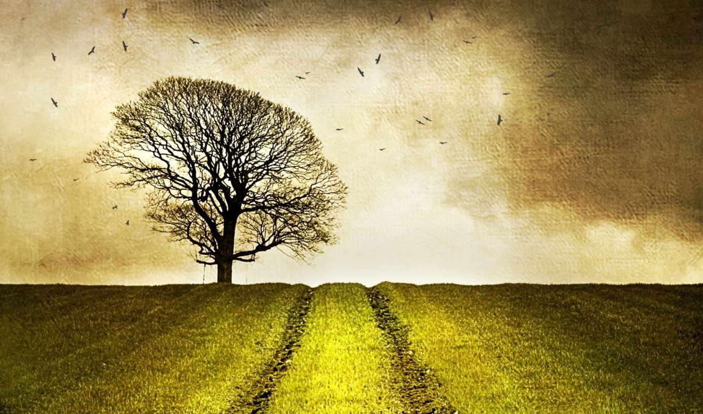 поле, landscape, стиль, dark, снег, картинка, fences, free,