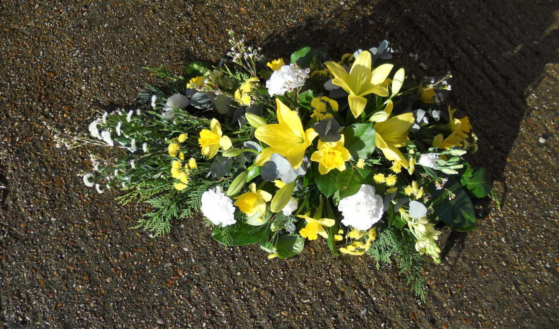 цветы, букеты, лилии,