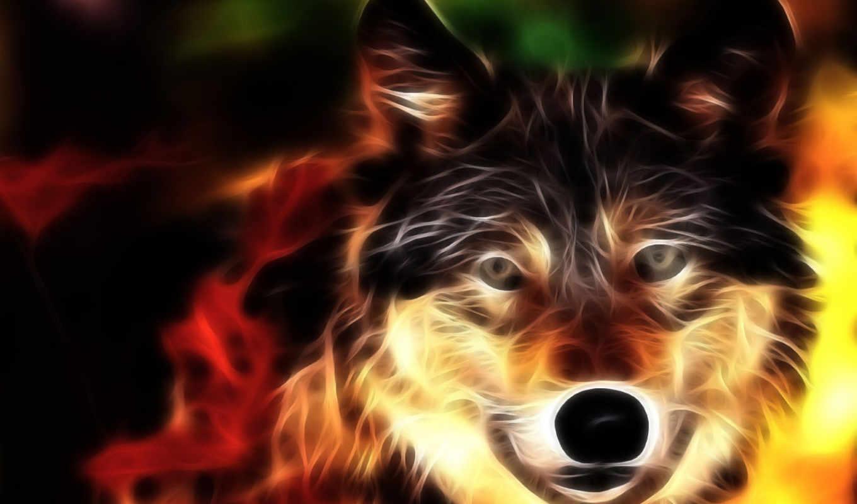 волк, животные, lobo, огонь, link, wallpaper, природа, девушки, креатив, lobos, parede, авто, любой, вкус, линии, морда, красивые, свет,
