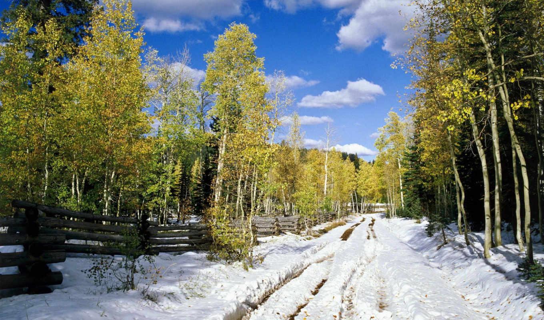 зимы, winter, начало, природа,