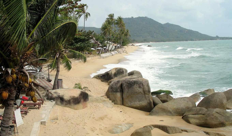пляж, tropical, desktop, природа, palm, ночь, облако,