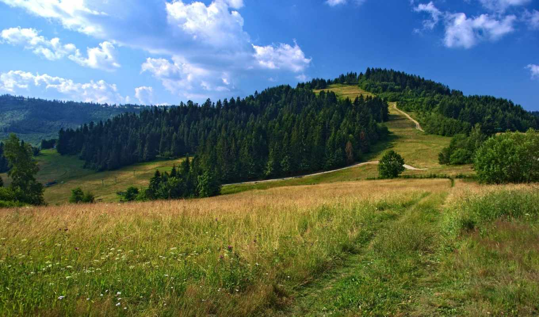 campo, paisaje, природа, пейзажи -, landscapes, montañas, camino, количество,