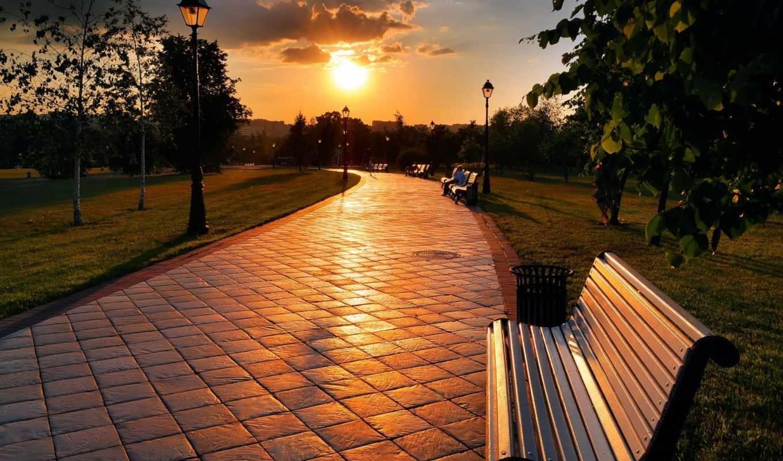мужчина, park, скамейки, трек, листва, trees, закат, кусты, осень, парке, russian,