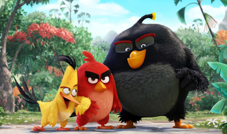 birds, angry, movie, кинотеатр, сниматься, red, chuck,