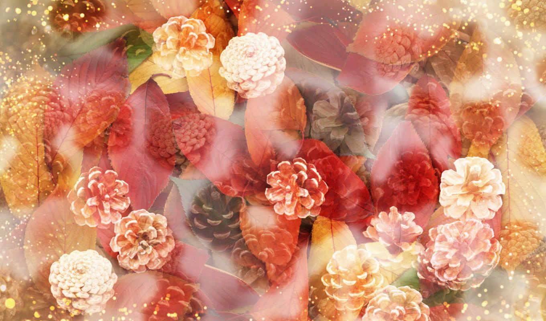 flower, разное, cones, autumn, leaves, flowers, art, красивые, изображение, часть, фоны, und,
