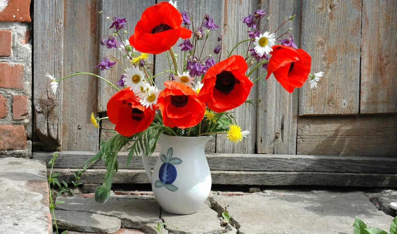 букет, маки, цветы, ромашки, полевые, одуванчики, кувшин, взгляд,