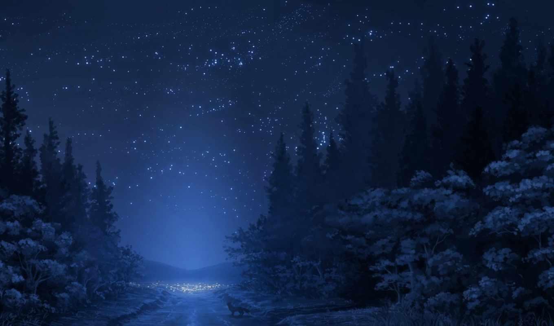 лес, ночь, ratio, деревя, горы, кб,