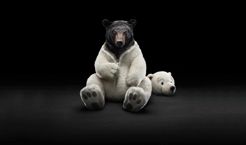 bear, ipad, duvar, рекламы, оригинал, действия, креативной, подборка, еще, funny,