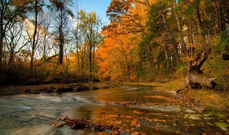 высокого, качества, озера, пейзажи -, реки, коллекции, фона, количество, мб,