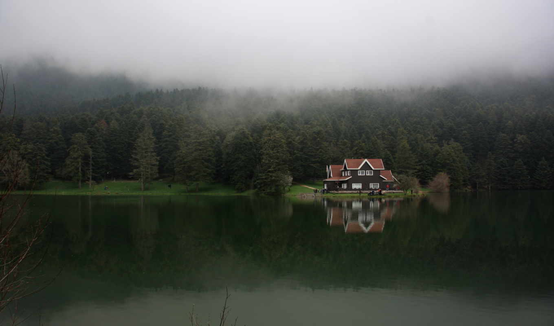 turkey, озеро, болу, лес, туман, гельджюке,