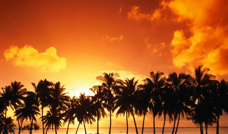 сол, parede, pôr, papel, praia, por, nascer, paisagens, ud,