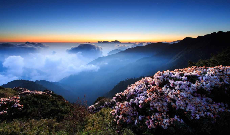 горы, небо, цветы, туман, закат, утро, горах, лес, oblaka, ночь,