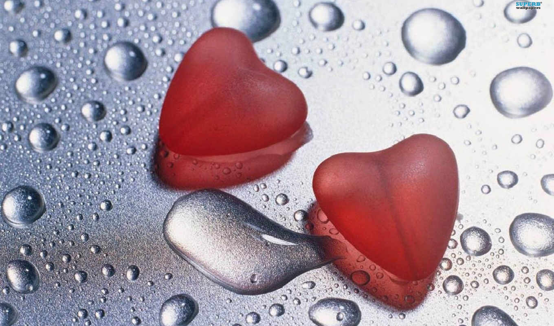 , сердца, капли, любовь,