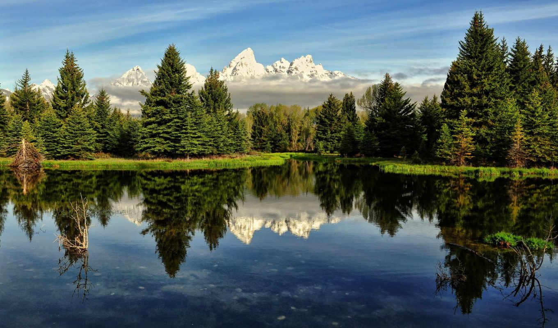 небо, reka, les, горы, сша, утро,
