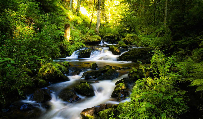 природы, природа, красивые, водопад, лес,